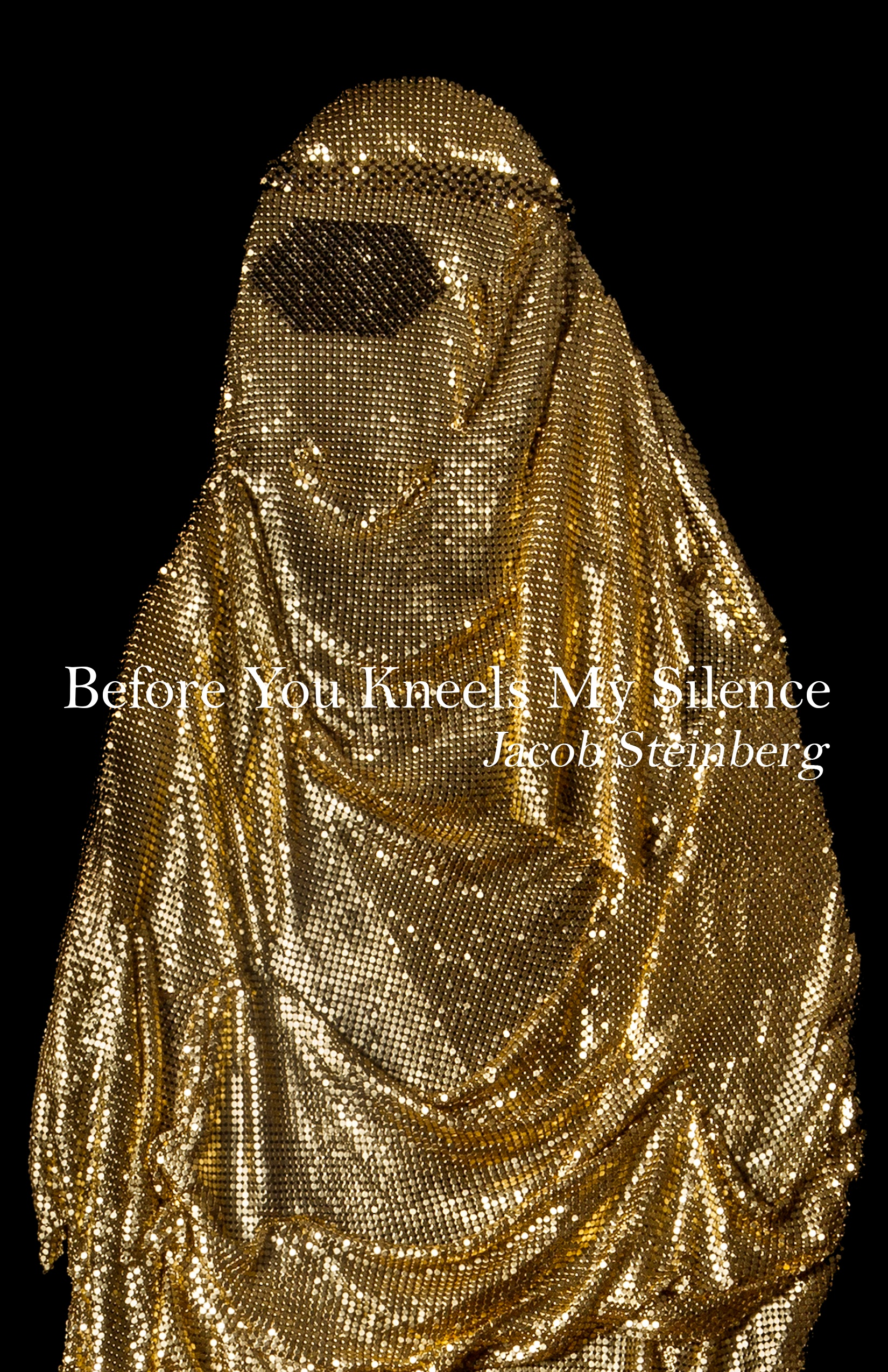 before you kneels my silence cover
